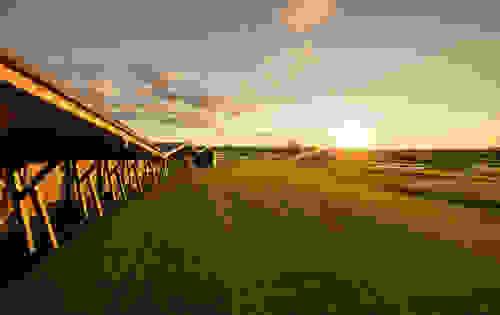 Rangepallide loosiratas Rae Golfis